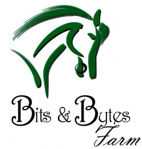 Bits & Bytes Farm - Thoroughbred horses for sale